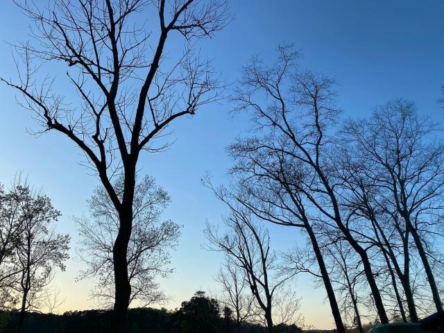 冬の澄み切った景色
