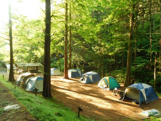 横並びのテント