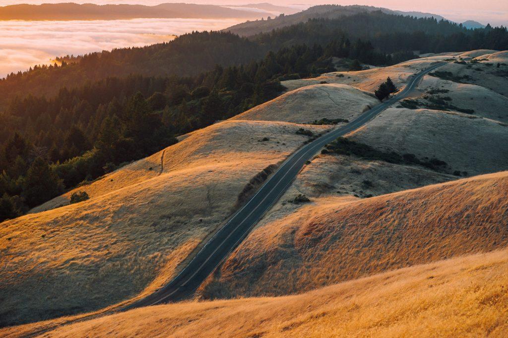 草原と道路