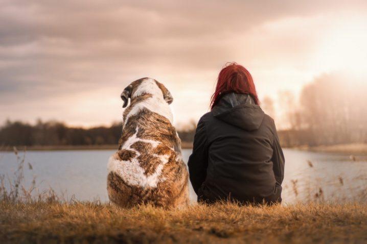 並んで座る女性と犬