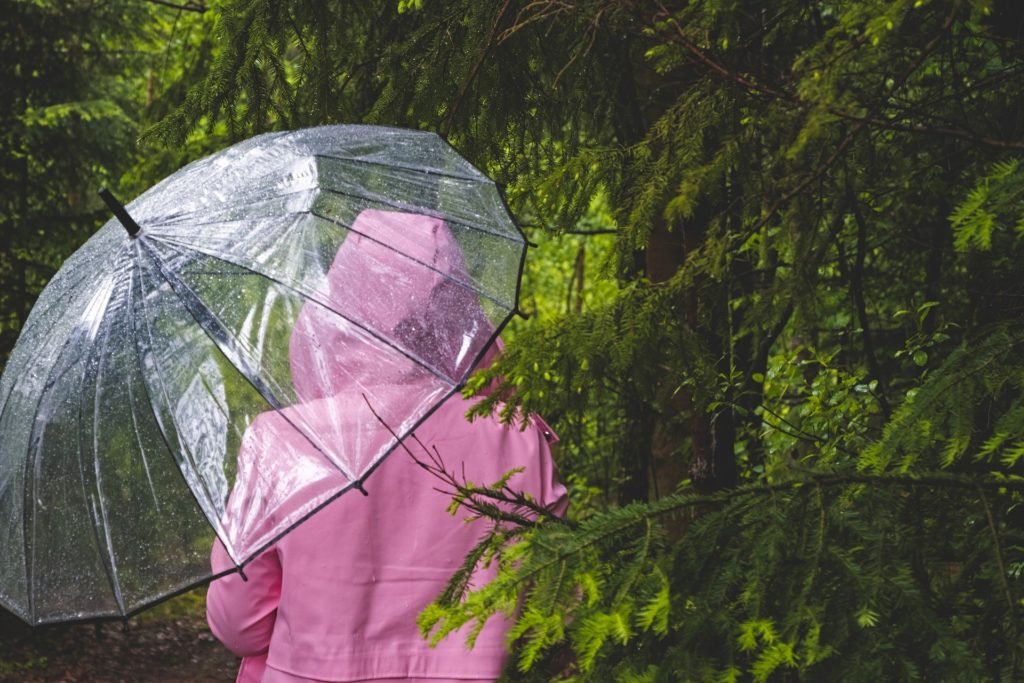 傘とレインコート
